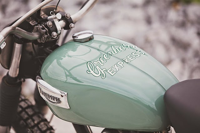 Greenhorn_Express_1971_Triumph_Daytona_T100R_Tin_Shack_Restoration_Moto-Mucci (3)