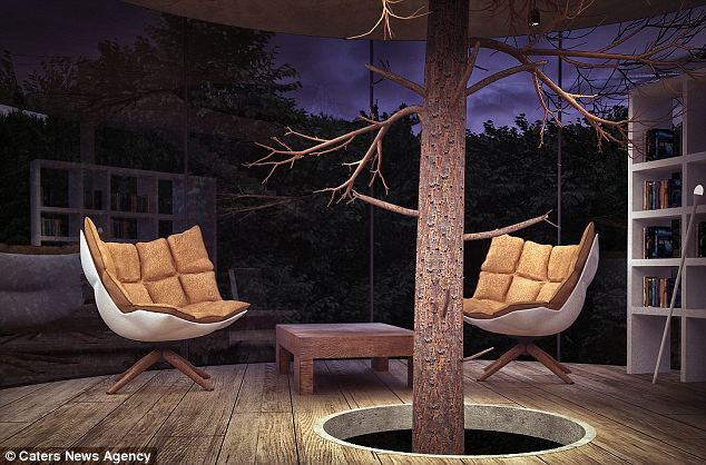 Bons Rapazes Tree in a House 5