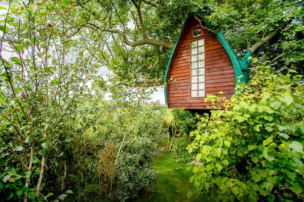 Tree_Sparrow_House_Cornwall_1