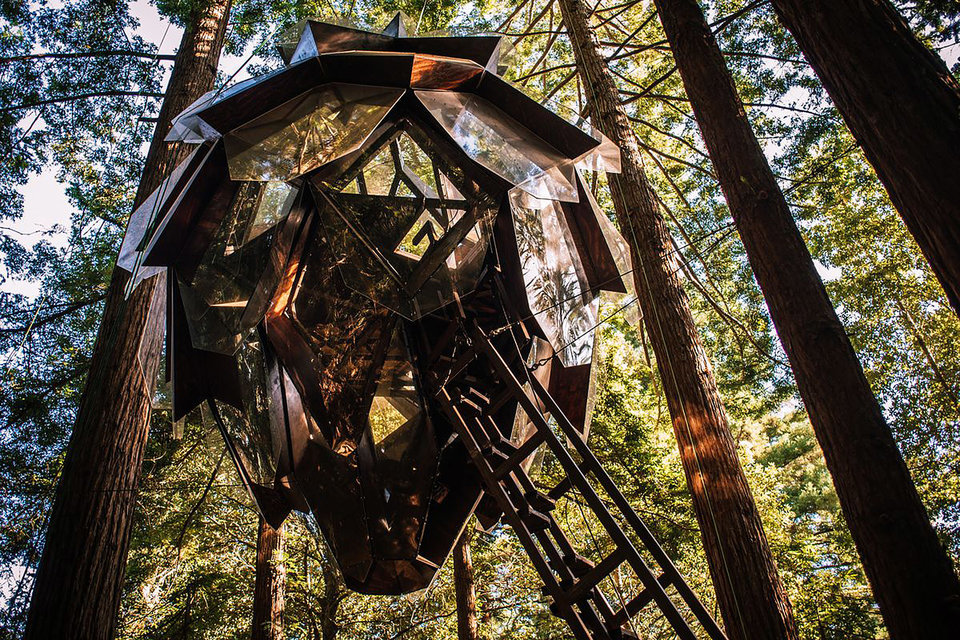 Pinecone Treehouse